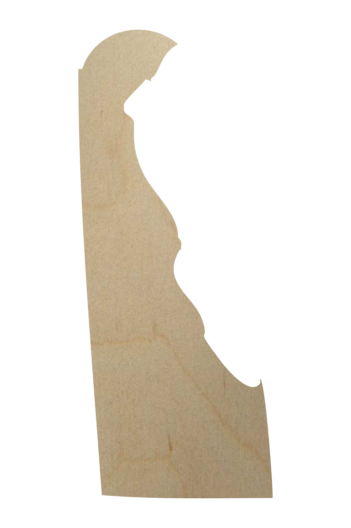 Delaware Wood State Shape